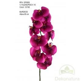 Orquidea Phalaenopsis Natur Grande Burdeos