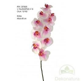 Orquídea Phalaenopsis Natur Grande Rosa