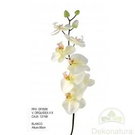 Orquidea x8 Blanca