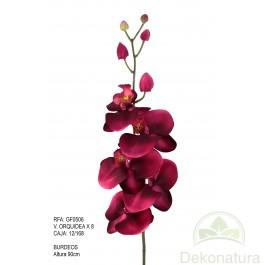 Orquídea x8 Burdeos