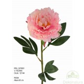 Vara Peonia Basic Rosa