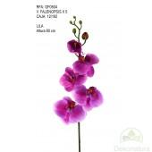 Orquidea Phalaenopsis Natur Pequeña Lila