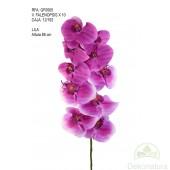 Orquídea Phalaenopsis Natur Grande Lila
