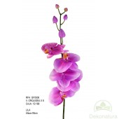 Orquídea x8 Lila