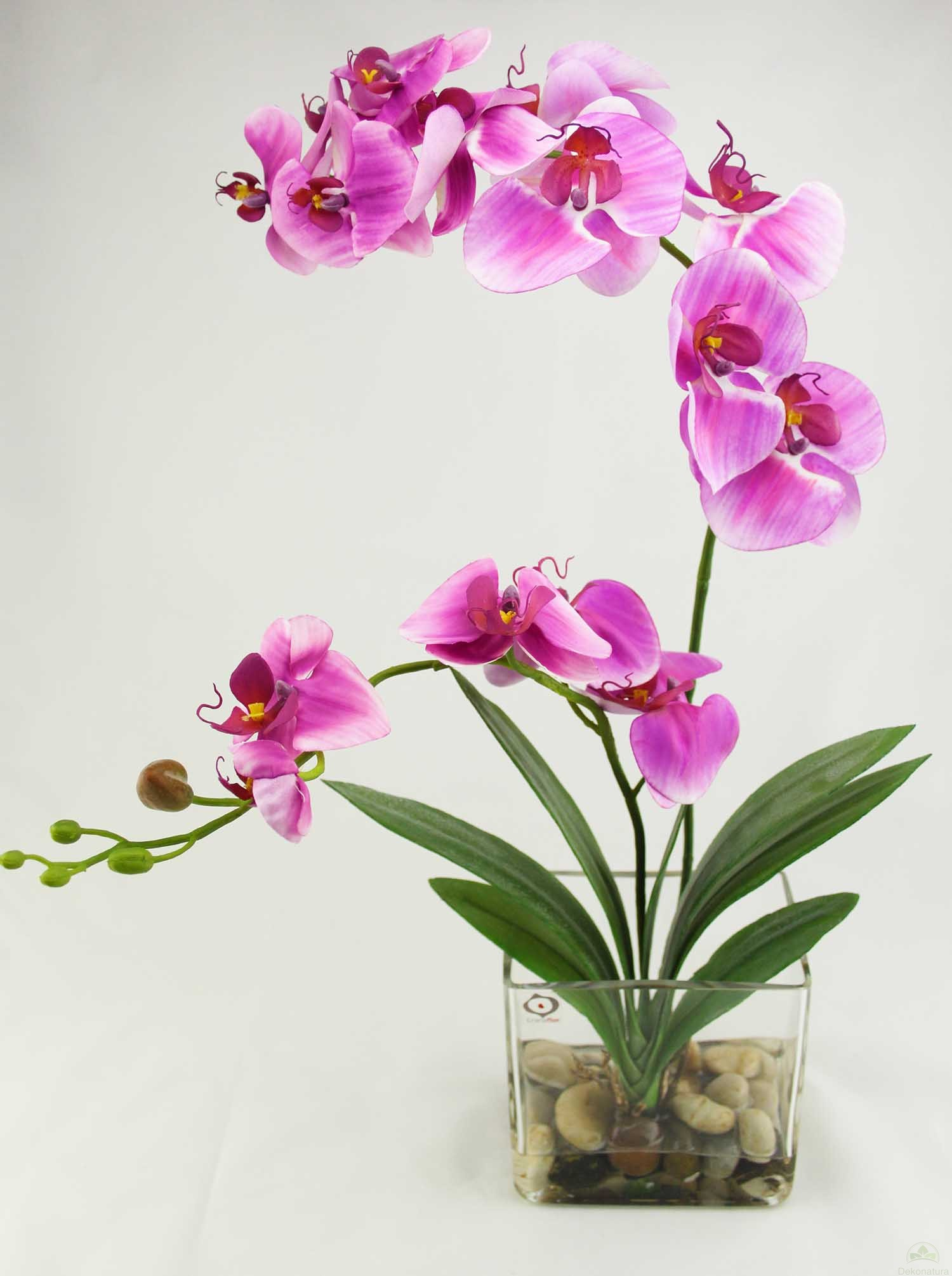 Orquidea nature x 2 lila con hojas de cymbidium for Orquideas artificiales