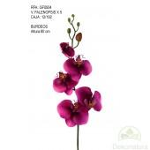 Orquídea Phalaenopsis Natur Pequeña burdeos