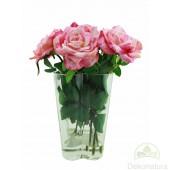 Centro Toscana Rosas