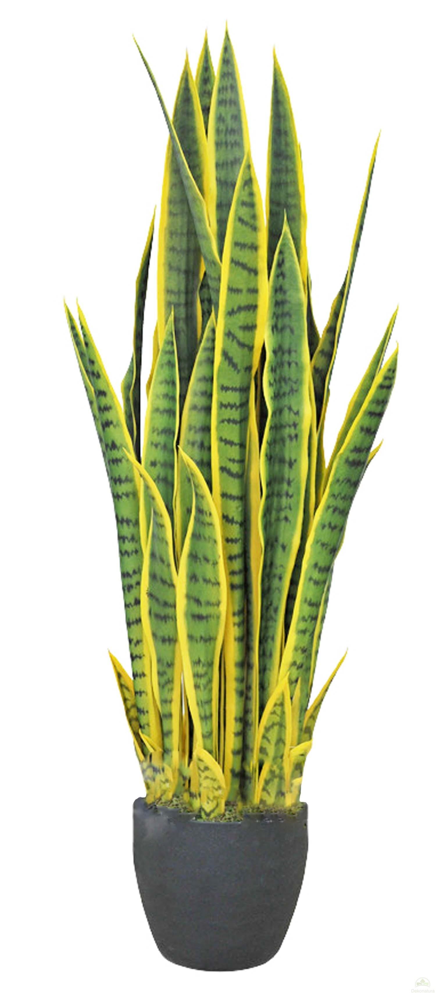 Artificiel bogenhanf Noir kunststofftopf 45 cm vert art plante SANSEVERIA